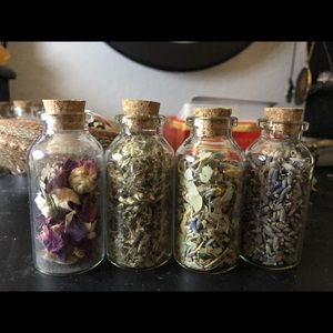 Little Witch Beginner Herbs!